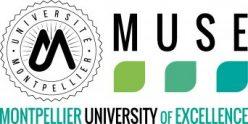 Logo i-site MUSE